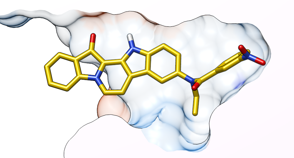 secretion of acetylcholinesterase and butyrylcholinesterase from