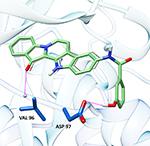 fascaplysin, фаскаплизин, cdk4, циклин зависимая киназа