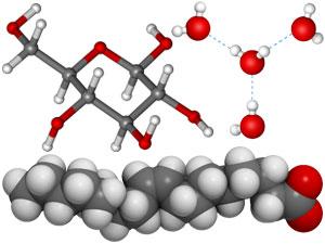 кислородсодержащие соединения, водородная связь