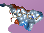 donepezil,acetylcholinesterase