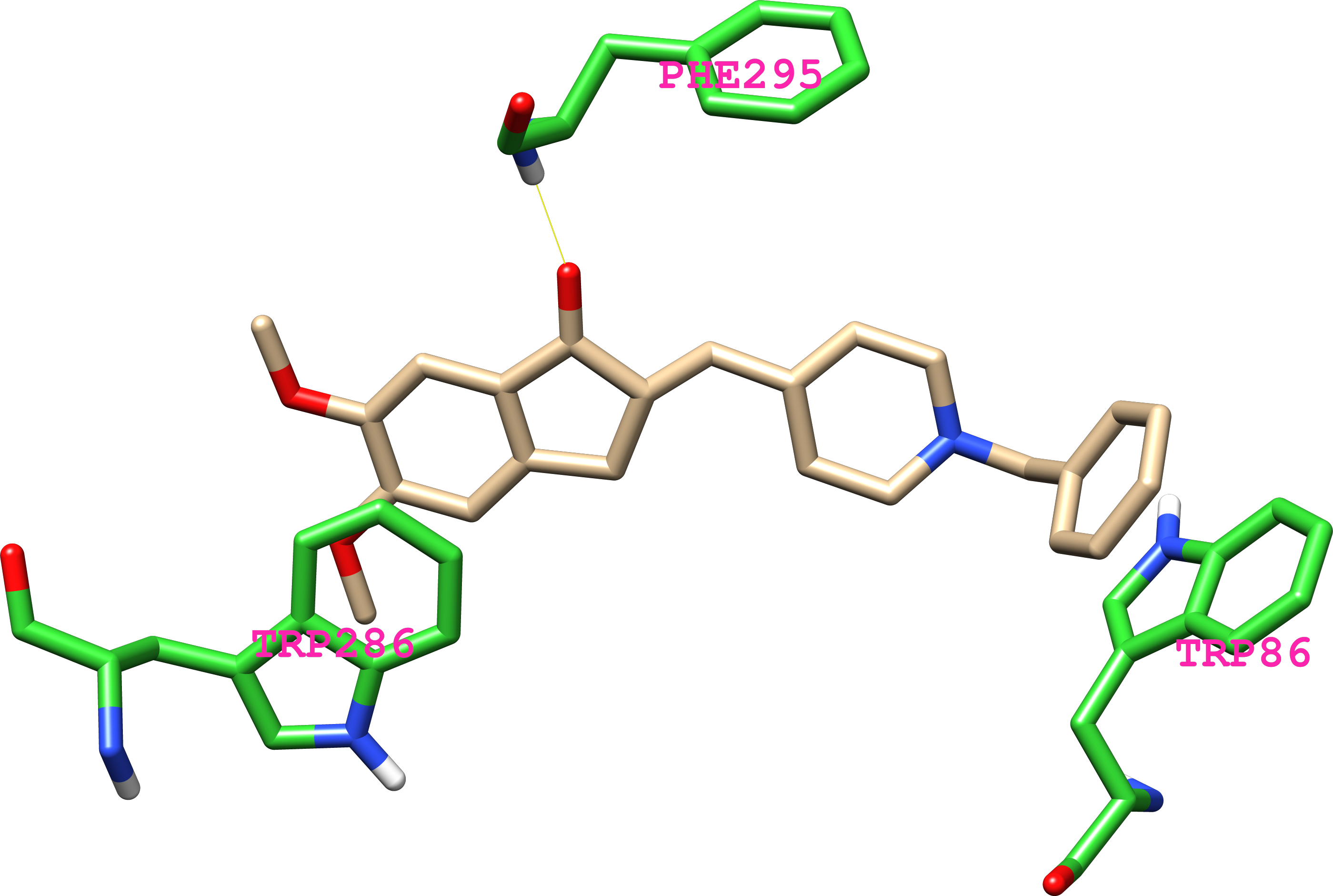 acetylcholinesterase Acetylcholinesterase: an enzyme that breaks down the neurotransmitter acetylcholine at the synaptic cleft (the space between two nerve cells) so the next nerve impulse can be transmitted across the synaptic gap.