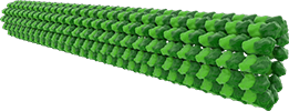 микротрубочки, microtubules, cytoskeleton, цитоскелет, филаменты