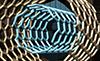 нанотрубки, nanotube, swnt, mwnt